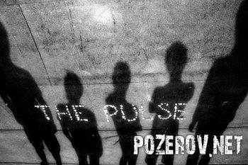 Интервью с группой Pulse