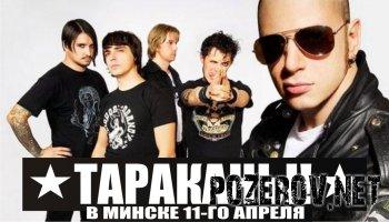Тараканы в Минске: Пресс-релиз