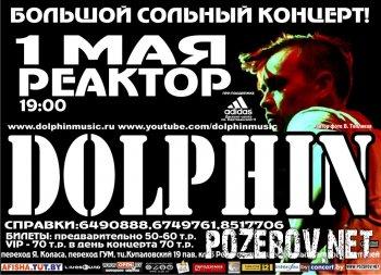 Dolphin в Минске