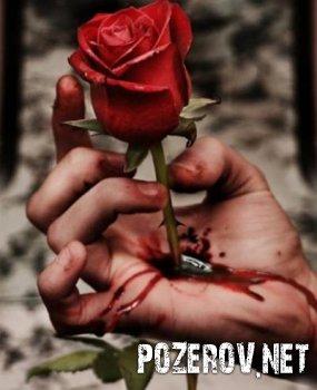 Роза для аськи...